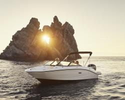 Sea Ray SPX 190 OB Europe Vorschaubild 1