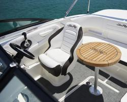 Sea Ray SPX 190 OB Europe Vorschaubild 3